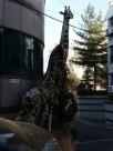 Koreanische Tierwelt
