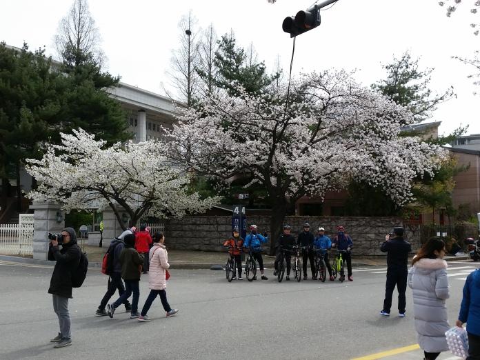 Korea April 707