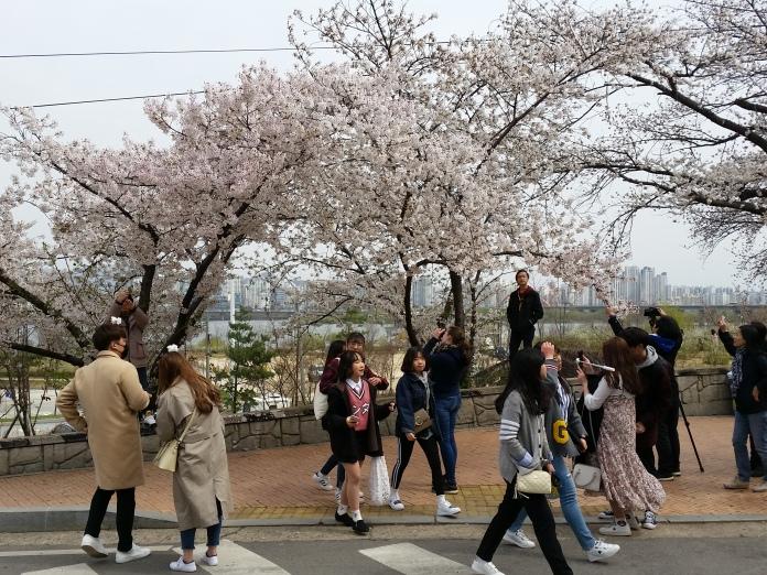 Korea April 714