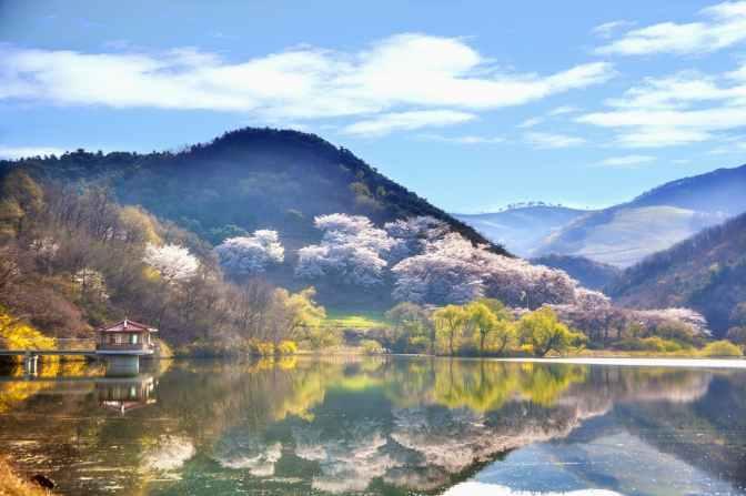 beautiful daylight fall korea