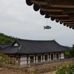Geschichten aus dem Zen-Tempel II: Mensch, ärgere dich nicht!