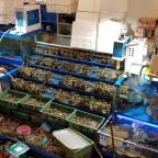 Es fischelt: Schmausen im Noriyangjin-Fischmarkt