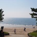 Ans Westmeer: Daecheon, Boryeong, Sapsido, Ungcheon
